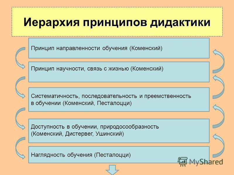 Принцип научности, связь с жизнью (Коменский) Систематичность, последовательность и преемственность в обучении (Коменский, Песталоцци) Доступность в обучении, природосообразность (Коменский, Дистервег, Ушинский) Принцип направленности обучения (Комен