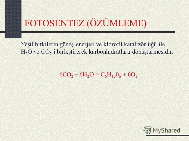 FOTOSENTEZ (ÖZÜMLEME) Yeşil bitkilerin güneş enerjisi ve klorofil katalizörlüğü ile H 2 O ve CO 2 i birleştirerek karbonhidratlara dönüştürmesidir. 6CO 2 + 6H 2 O = C 6 H 12 0 6 + 6O 2