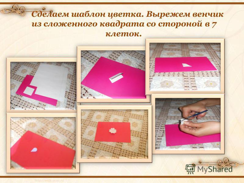 Сделаем шаблон цветка. Вырежем венчик из сложенного квадрата со стороной в 7 клеток.