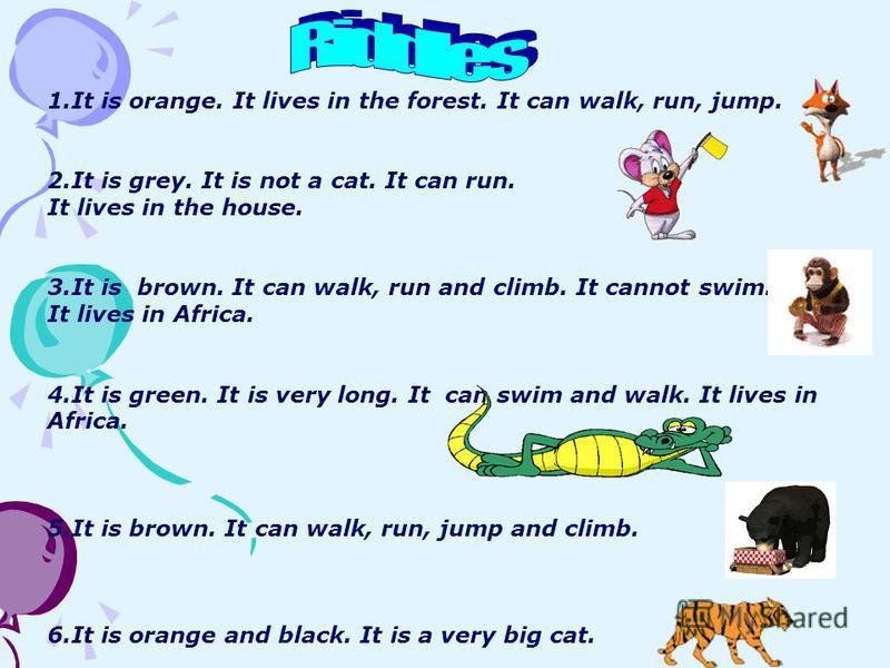 1.It is orange. It lives in the forest. It can walk, run, jump. 2.It is grey. It is not a cat. It can run. It lives in the house. 3.It is brown. It can walk, run and climb. It cannot swim. It lives in Africa. 4.It is green. It is very long. It can sw
