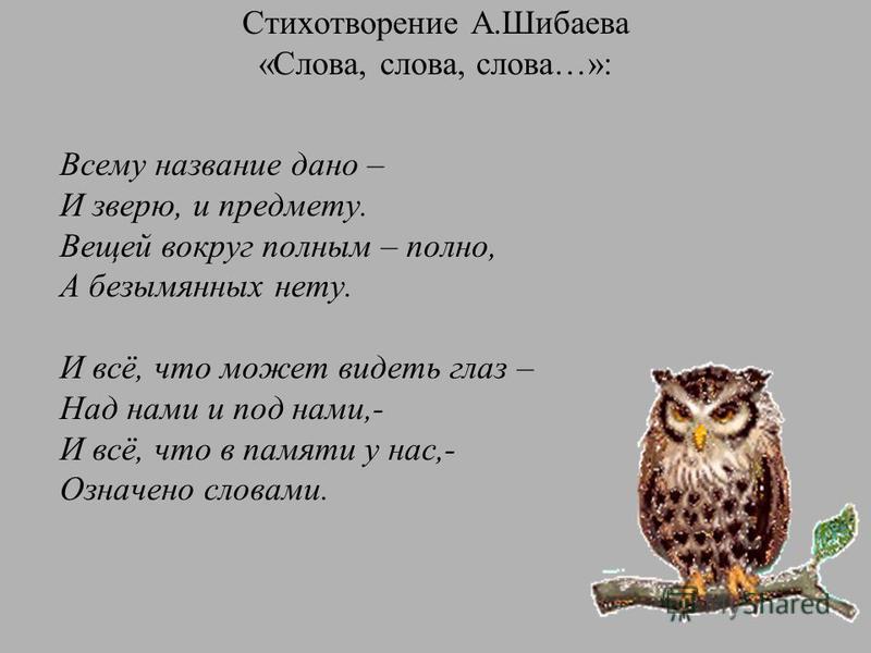 Стихотворение А.Шибаева «Слова, слова, слова…»: Всему название дано – И зверю, и предмету. Вещей вокруг полным – полно, А безымянных нету. И всё, что может видеть глаз – Над нами и под нами,- И всё, что в памяти у нас,- Означено словами.
