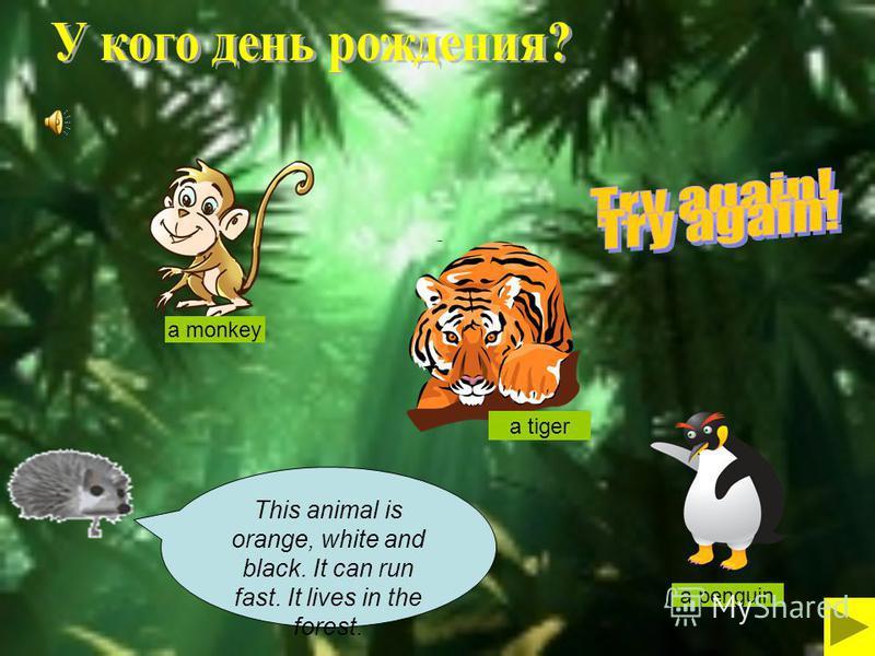 Игра-тренажер по английскому языку «Animals» Автор: Андреева В.Ю., учитель английского языка