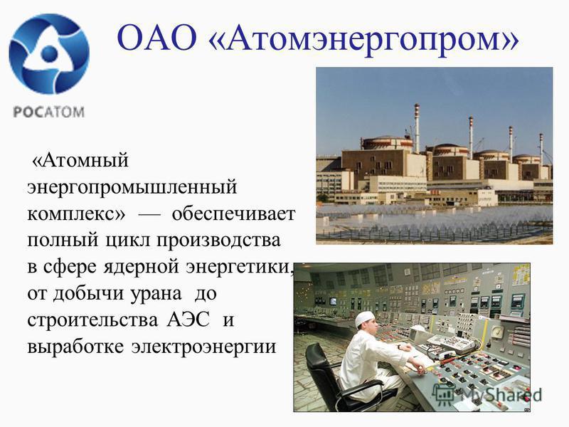 ОАО «Атомэнергопром» «Атомный энергопромышленный комплекс» обеспечивает полный цикл производства в сфере ядерной энергетики, от добычи урана до строительства АЭС и выработке электроэнергии