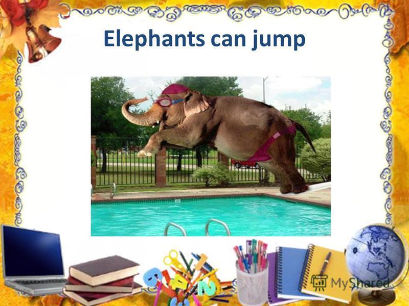 Elephants can jump