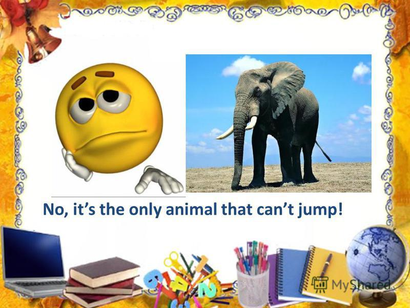 No, its the only animal that cant jump!