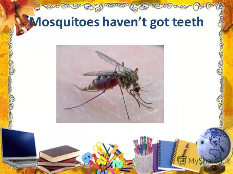 Mosquitoes havent got teeth