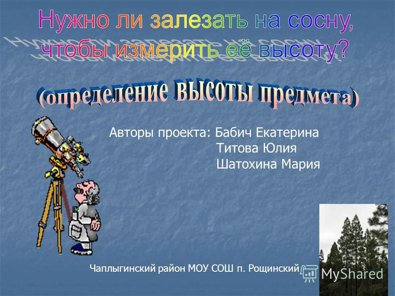 Авторы проекта: Бабич Екатерина Титова Юлия Шатохина Мария Чаплыгинский район МОУ СОШ п. Рощинский