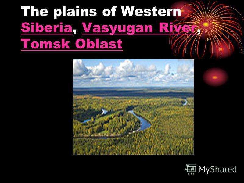 The plains of Western Siberia, Vasyugan River, Tomsk Oblast SiberiaVasyugan River Tomsk Oblast