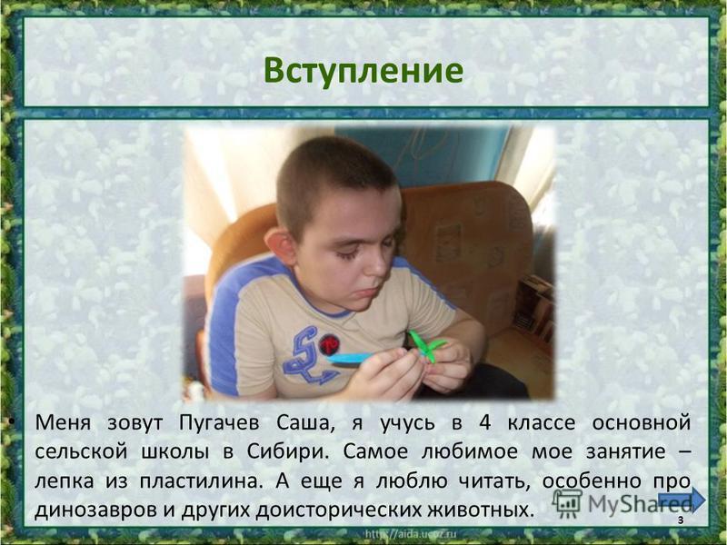 Вступление Меня зовут Пугачев Саша, я учусь в 4 классе основной сельской школы в Сибири. Самое любимое мое занятие – лепка из пластилина. А еще я люблю читать, особенно про динозавров и других доисторических животных. 3