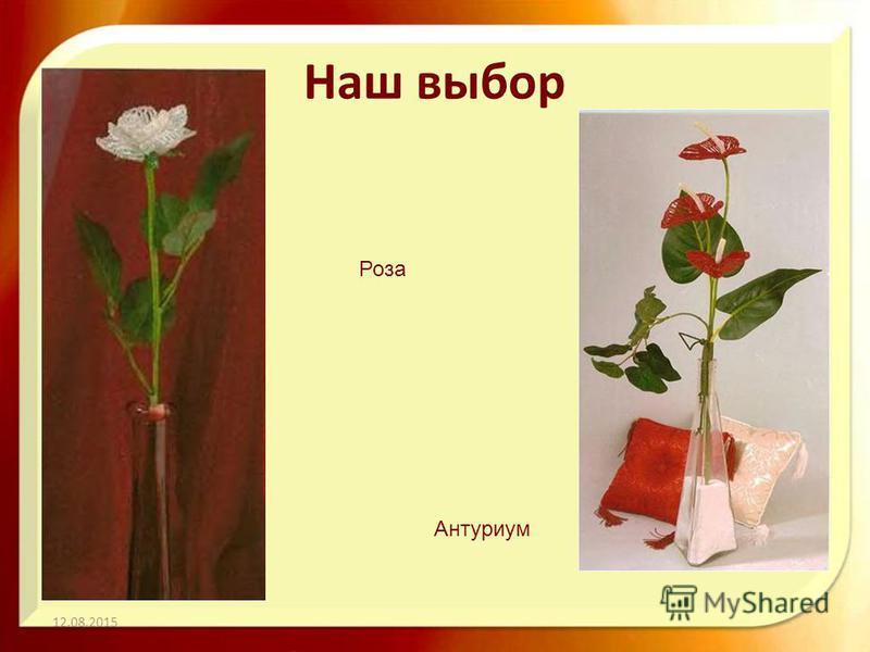 Наш выбор 12.08.2015 Роза Антуриум
