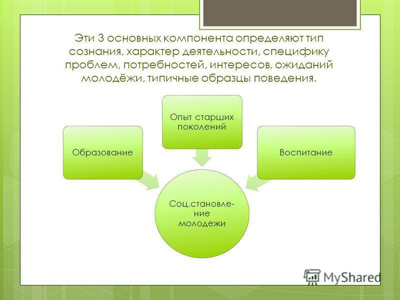 Эти 3 основных компонента определяют тип сознания, характер деятельности, специфику проблем, потребностей, интересов, ожиданий молодёжи, типичные образцы поведения. Соц.становление молодежи Образование Опыт старших поколений Воспитание