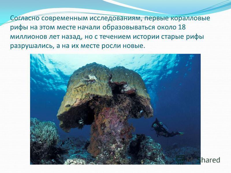Согласно современным исследованиям, первые коралловые рифы на этом месте начали образовываться около 18 миллионов лет назад, но с течением истории старые рифы разрушались, а на их месте росли новые.