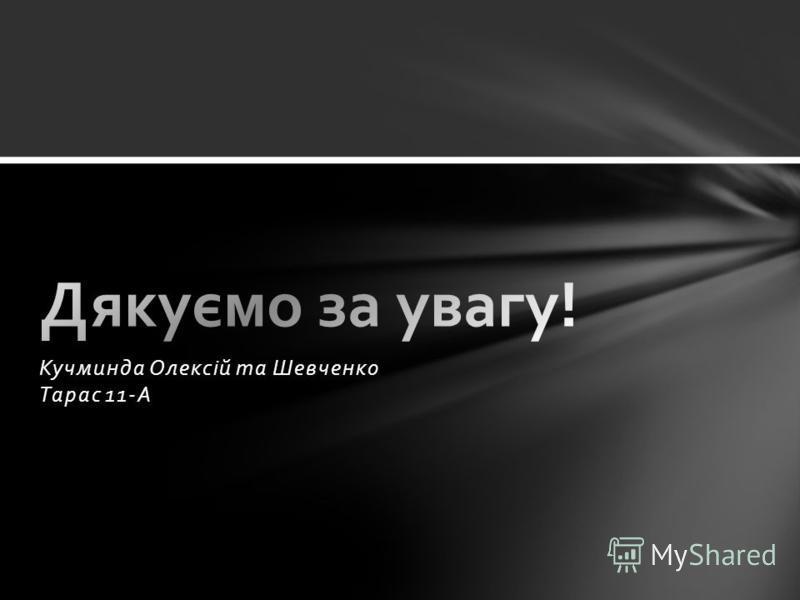 Кучминда Олексій та Шевченко Тарас 11-А