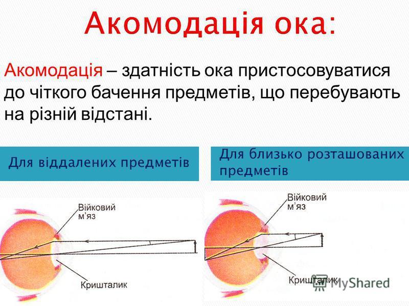Для віддалених предметів Для близько розташованих предметів Акомодація – здатність ока пристосовуватися до чіткого бачення предметів, що перебувають на різній відстані.