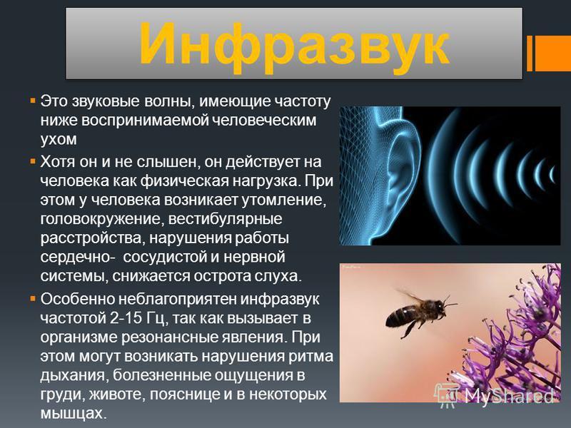 Инфразвук Это звуковые волны, имеющие частоту ниже воспринимаемой человеческим ухом Хотя он и не слышен, он действует на человека как физическая нагрузка. При этом у человека возникает утомление, головокружение, вестибулярные расстройства, нарушения