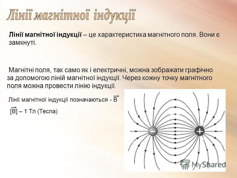 Лінії магнітної індукції – це характеристика магнітного поля. Вони є замкнуті. Магнітні поля, так само як і електричні, можна зображати графічно за допомогою ліній магнітної індукції. Через кожну точку магнітного поля можна провести лінію індукції. Л