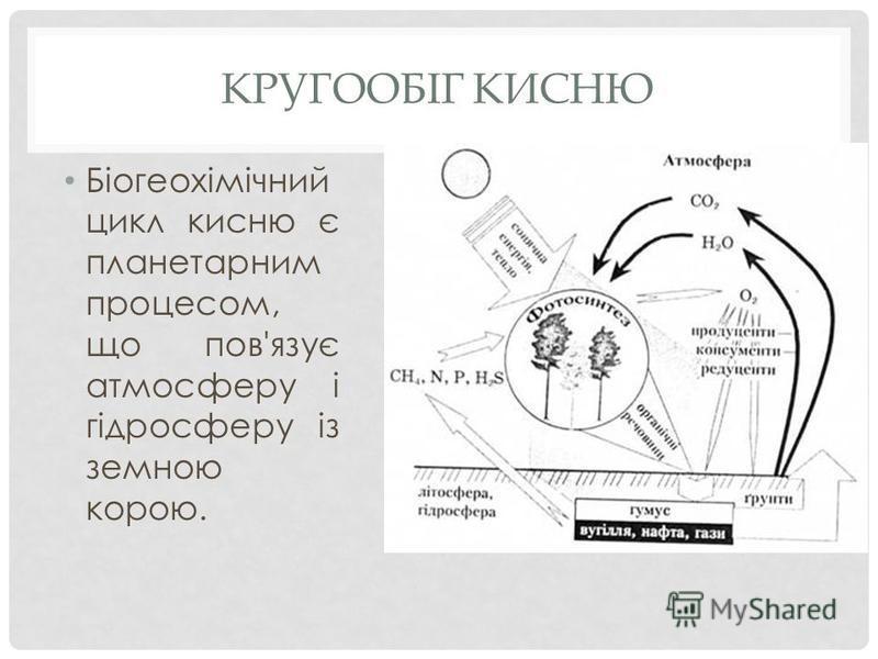 КРУГООБІГ КИСНЮ Біогеохімічний цикл кисню є планетарним процесом, що пов'язує атмосферу і гідросферу із земною корою.