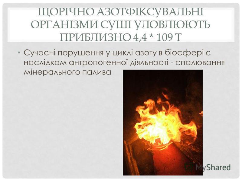 ЩОРІЧНО АЗОТФІКСУВАЛЬНІ ОРГАНІЗМИ СУШІ УЛОВЛЮЮТЬ ПРИБЛИЗНО 4,4 * 109 Т Сучасні порушення у циклі азоту в біосфері є наслідком антропогенної діяльності - спалювання мінерального палива