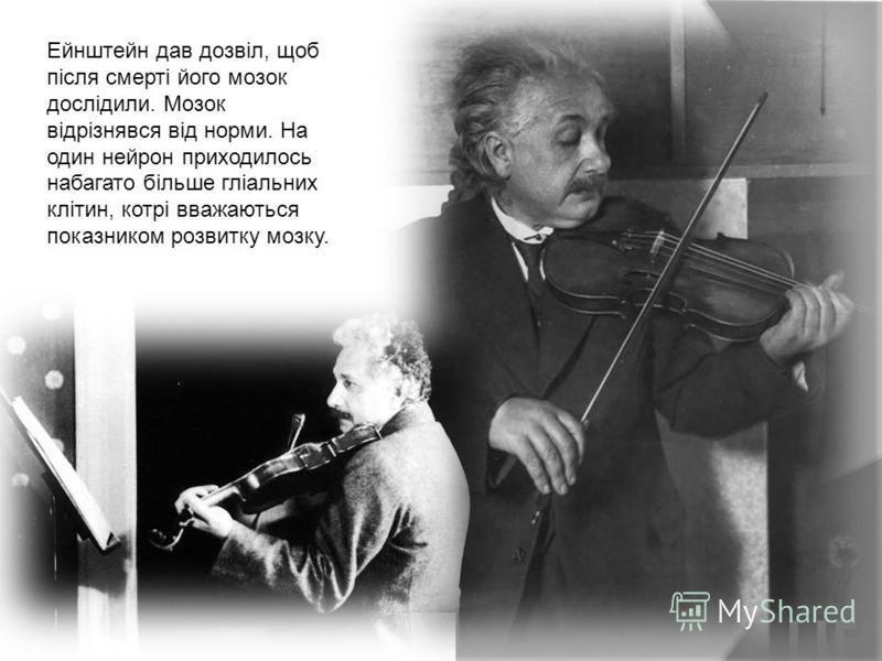 Ейнштейн дав дозвіл, щоб після смерті його мозок дослідили. Мозок відрізнявся від норми. На один нейрон приходилось набагато більше гліальних клітин, котрі вважаються показником розвитку мозку.