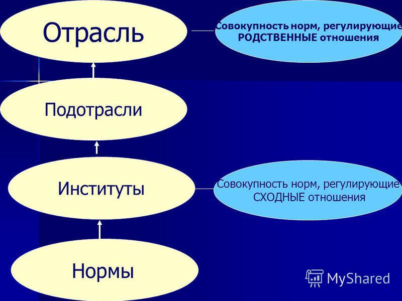 Нормы Институты Подотрасли Отрасль Совокупность норм, регулирующие СХОДНЫЕ отношения Совокупность норм, регулирующие РОДСТВЕННЫЕ отношения