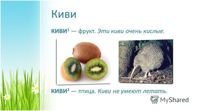 Киви КИВИ 1 фрукт. Эти киви очень кислые. КИВИ 2 птица. Киви не умеют летать.