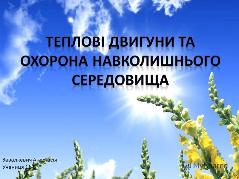 Завалкевич Анастасія Учениця 11-Б