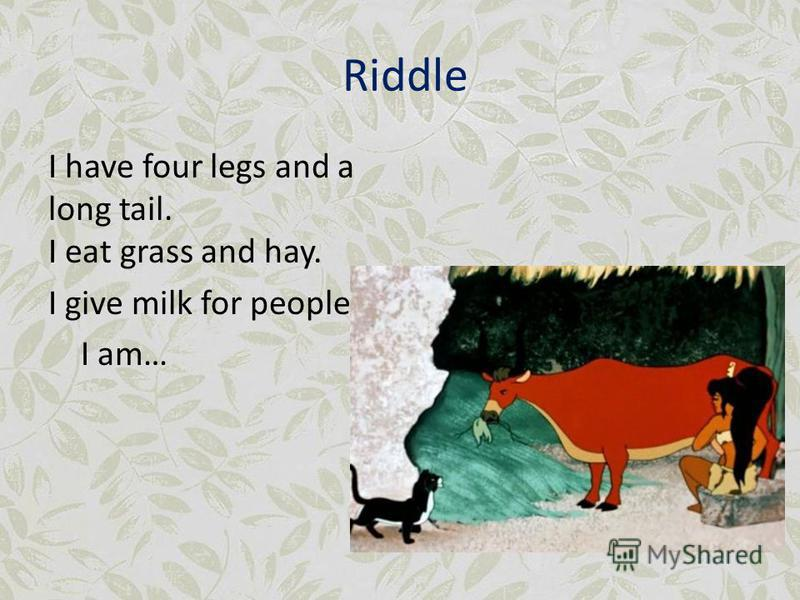 Riddle I have four legs and a long tail. I eat grass and hay. I give milk for people. I am…