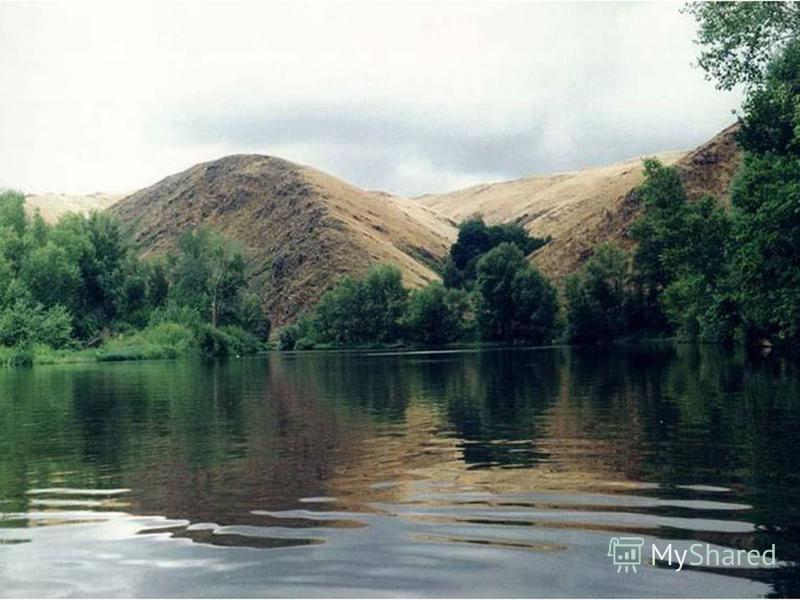 Оренбургский государственный степной заповедник создан в 1989 году. Он состоит из четырех участков, общей площадью 21,7 тыс. га. А именно: