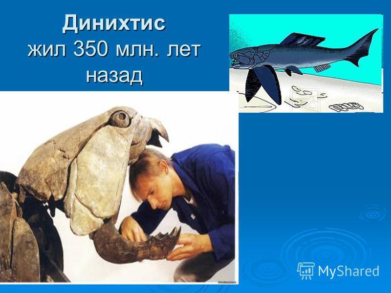 Динихтис жил 350 млн. лет назад