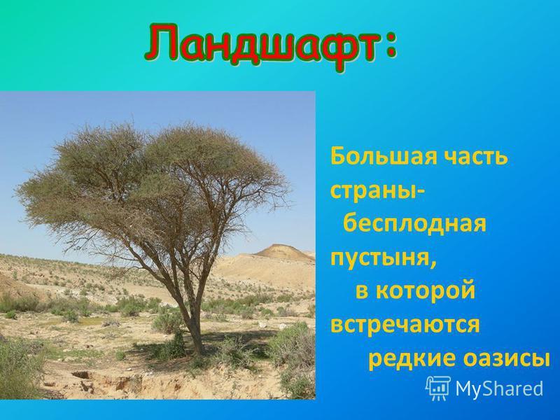 Большая часть страны- бесплодная пустыня, в которой встречаются редкие оазисы Гигантские песчаные дюны в пустыне Руб-эль-Хали Самая высокая гора – Джабаль - Сауда 3133 м. В этой стране нет рек.