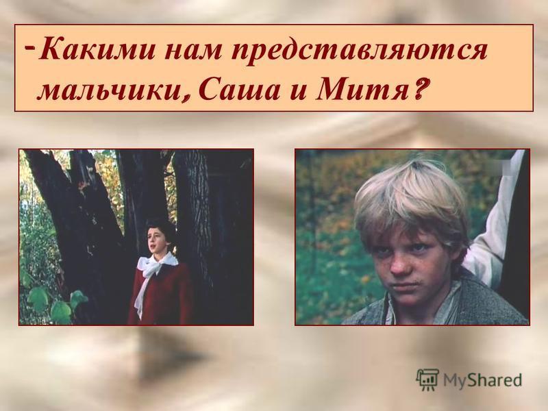 - Какими нам представляются мальчики, Саша и Митя ?
