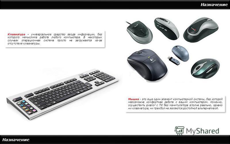Назначение Клавиатура – универсальное средство ввода информации, без которого немыслима работа любого компьютера. В некоторых случаях операционная система просто не загружается из-за отсутствия клавиатуры. Мышка - это еще один элемент компьютерной си
