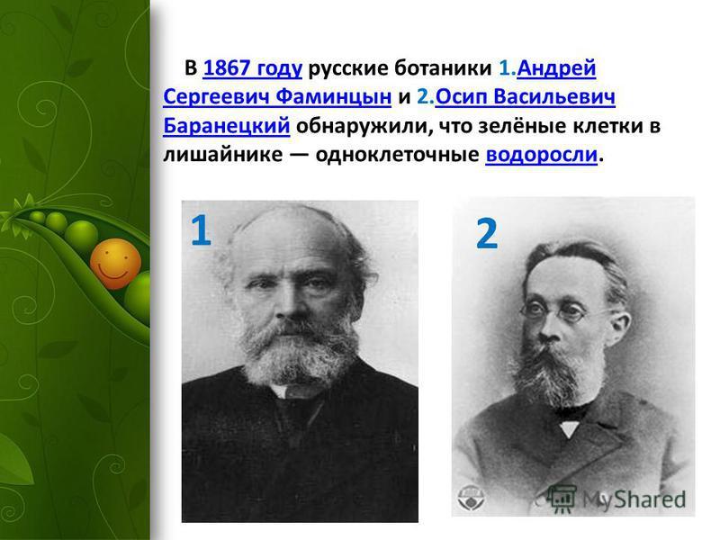 В 1867 году русские ботаники 1. Андрей Сергеевич Фаминцын и 2. Осип Васильевич Баранецкий обнаружили, что зелёные клетки в лишайнике одноклеточные водоросли.1867 году Андрей Сергеевич Фаминцын Осип Васильевич Баранецкийводоросли 1 2