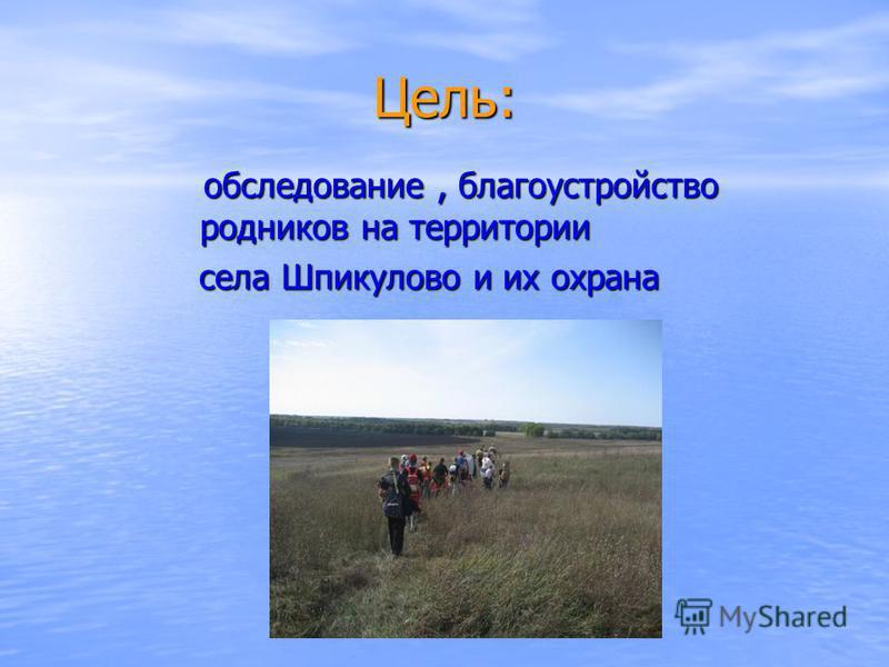 Цель: обследование, благоустройство родников на территории обследование, благоустройство родников на территории села Шпикулово и их охрана села Шпикулово и их охрана