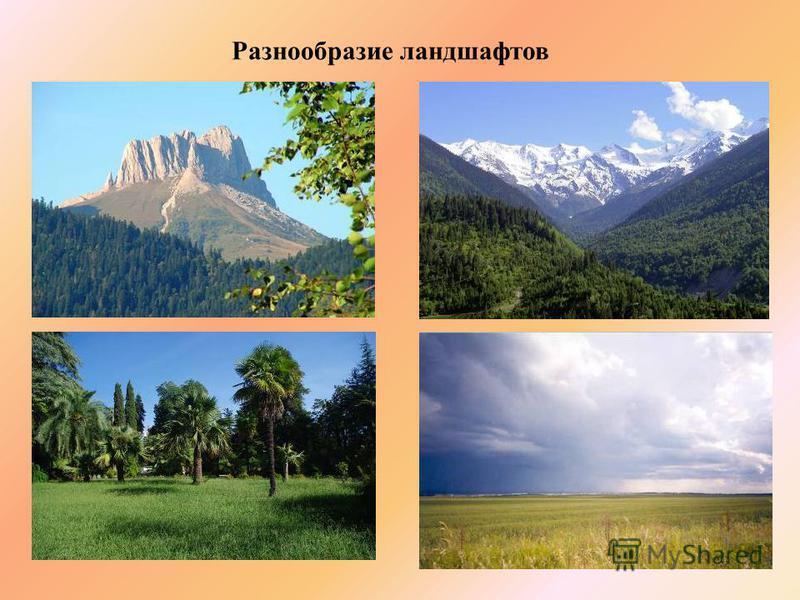 Разнообразие ландшафтов