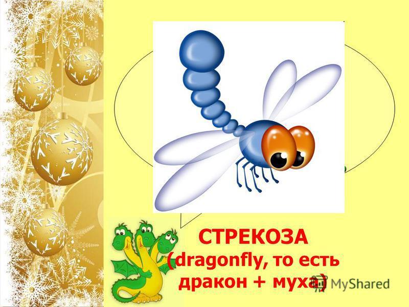 Название какого насекомого на английском языке складывается из двух слов: дракон и муха? СТРЕКОЗА (dragonfly, то есть дракон + муха)