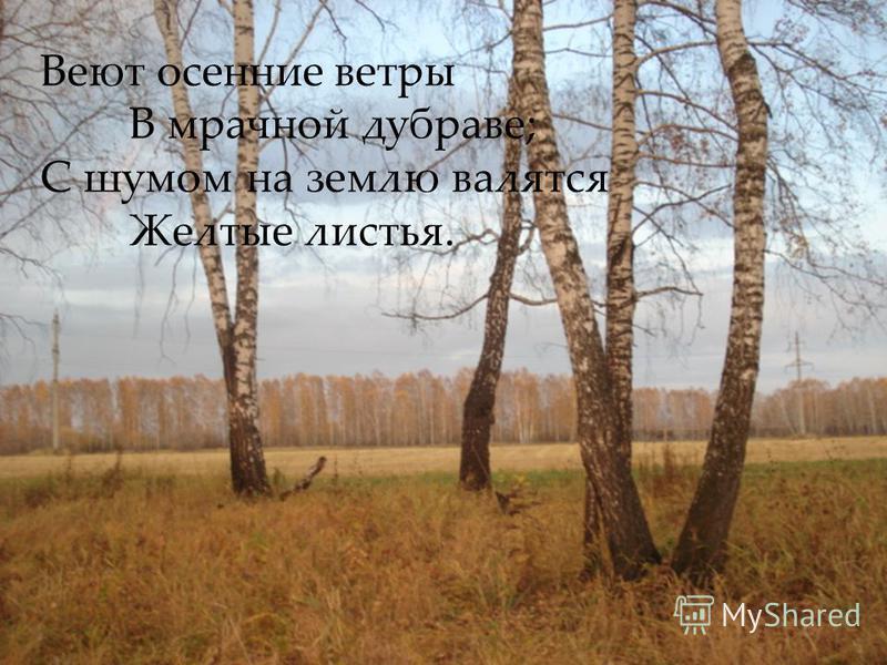 Веют осенние ветры В мрачной дубраве; С шумом на землю валятся Желтые листья.