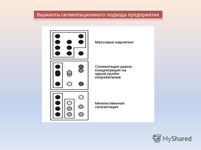 Варианты сегментационного подхода предприятия