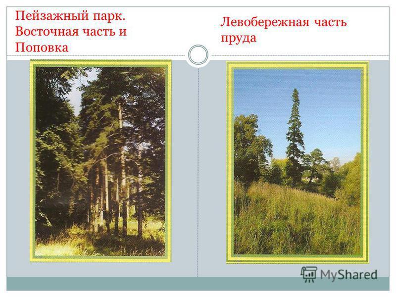 Пейзажный парк. Восточная часть и Поповка Левобережная часть пруда