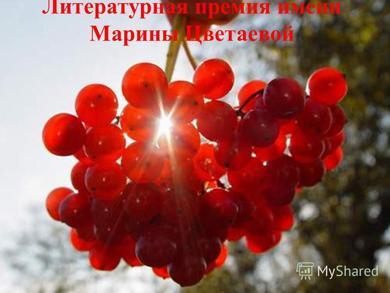 Литературная премия имени Марины Цветаевой