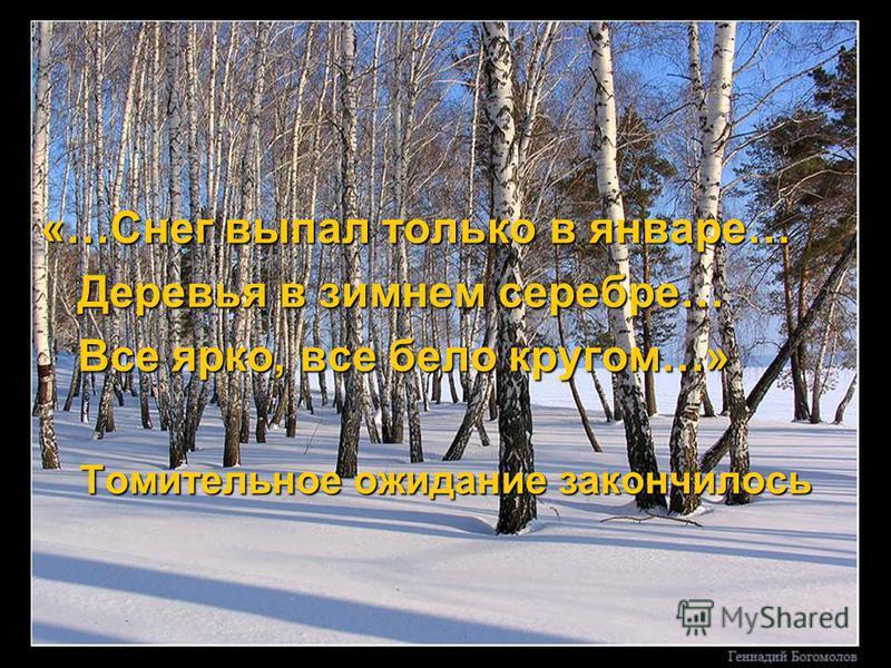 «…Снег выпал только в январе… Деревья в зимнем серебре… Все ярко, все бело кругом…» Томительное ожидание закончилось