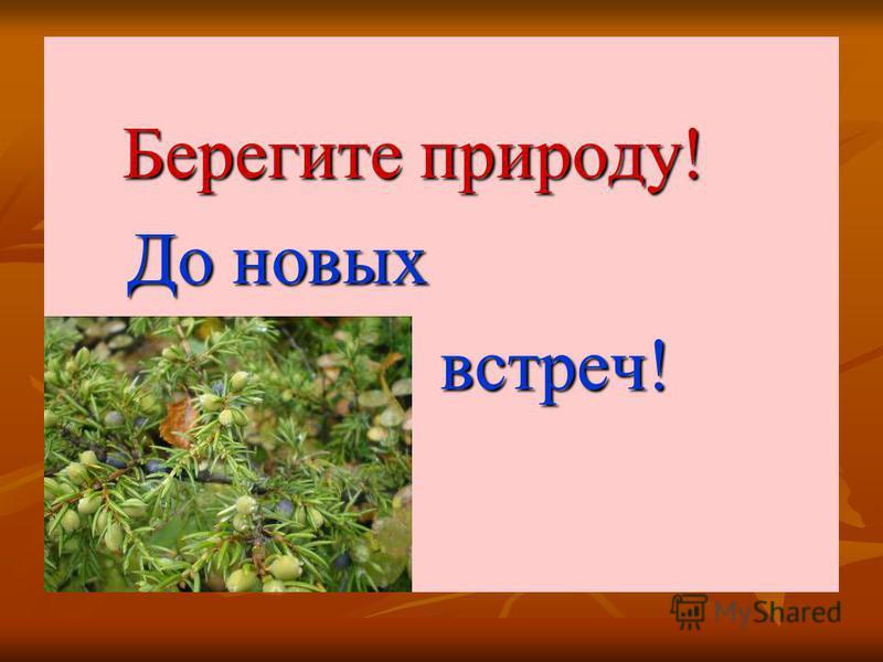 Берегите природу! Берегите природу! До новых До новых встреч! встреч!