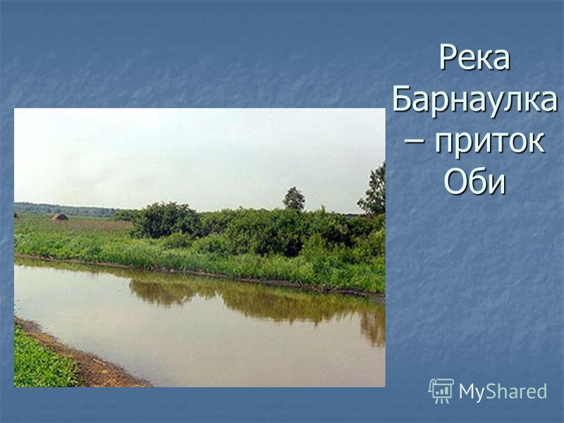 Река Барнаулка – приток Оби