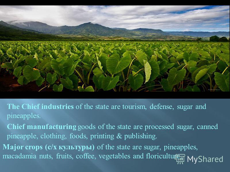 The Chief industries of the state are tourism, defense, sugar and pineapples. Chief manufacturing goods of the state are processed sugar, canned pineapple, clothing, foods, printing & publishing. Major crops (с / х культуры ) of the state are sugar,