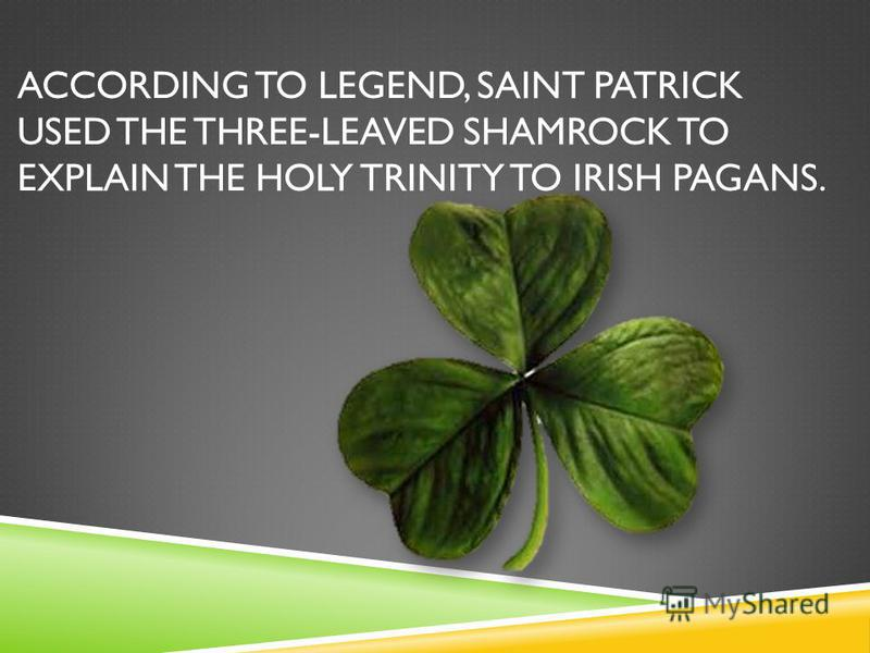 ACCORDING TO LEGEND, SAINT PATRICK USED THE THREE-LEAVED SHAMROCK TO EXPLAIN THE HOLY TRINITY TO IRISH PAGANS.