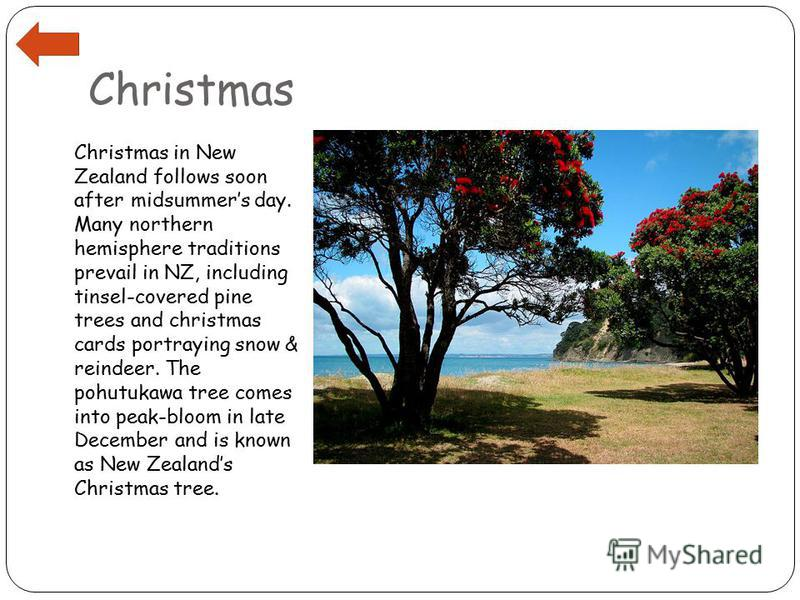 Christmas Christmas in New Zealand follows soon after midsummers day. Many northern hemisphere traditions prevail in NZ, including tinsel-covered pine trees and christmas cards portraying snow & reindeer. The pohutukawa tree comes into peak-bloom in