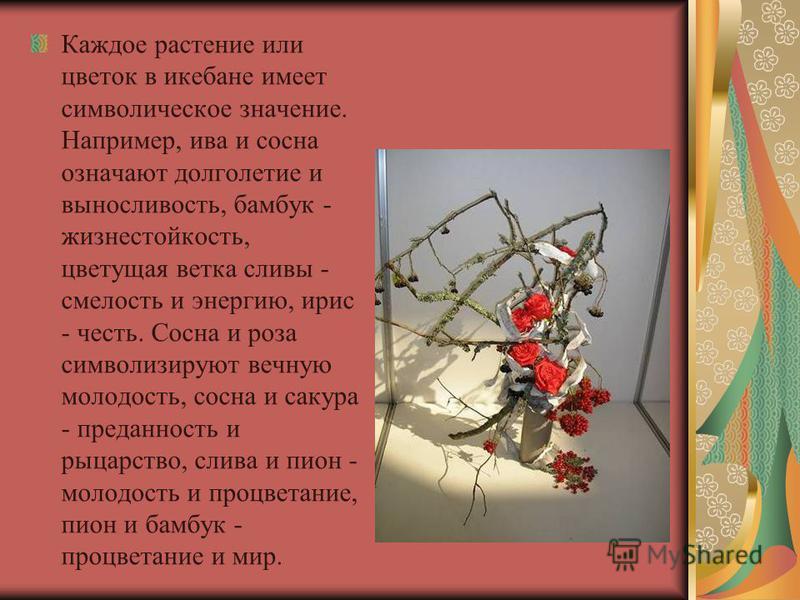Каждое растение или цветок в икебане имеет символическое значение. Например, ива и сосна означают долголетие и выносливость, бамбук - жизнестойкость, цветущая ветка сливы - смелость и энергию, ирис - честь. Сосна и роза символизируют вечную молодость