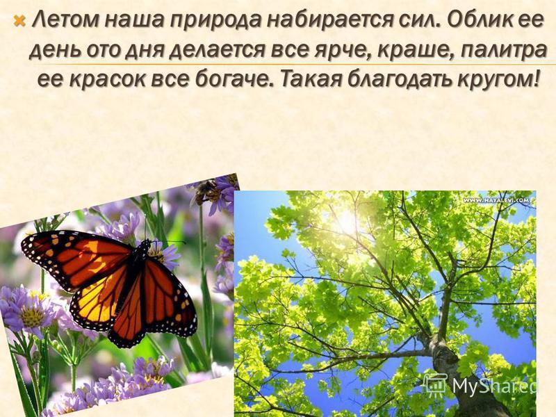 Летом наша природа набирается сил. Облик ее день ото дня делается все ярче, краше, палитра ее красок все богаче. Такая благодать кругом! Летом наша природа набирается сил. Облик ее день ото дня делается все ярче, краше, палитра ее красок все богаче.