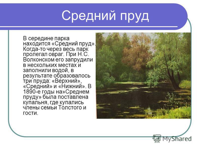 Средний пруд В середине парка находится «Средний пруд». Когда-то через весь парк пролегал овраг. При Н.С. Волконском его запрудили в нескольких местах и заполнили водой, в результате образовалось три пруда: «Верхний», «Средний» и «Нижний». В 1890-е г