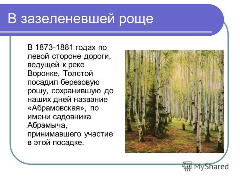 В зазеленевшей роще В 1873-1881 годах по левой стороне дороги, ведущей к реке Воронке, Толстой посадил березовую рощу, сохранившую до наших дней название «Абрамовская», по имени садовника Абрамыча, принимавшего участие в этой посадке.